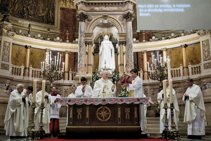 Cardinal Erdo: We must shape life in the spirit of the gospel