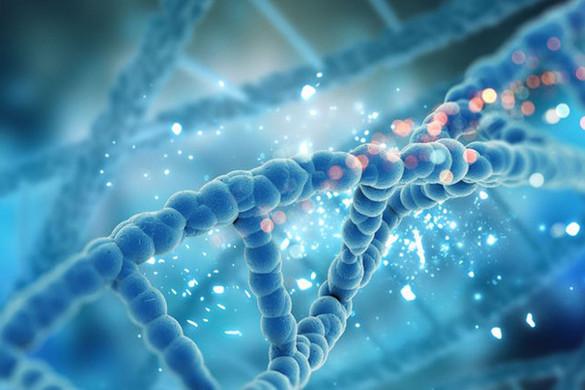 Genetika és koronavírus
