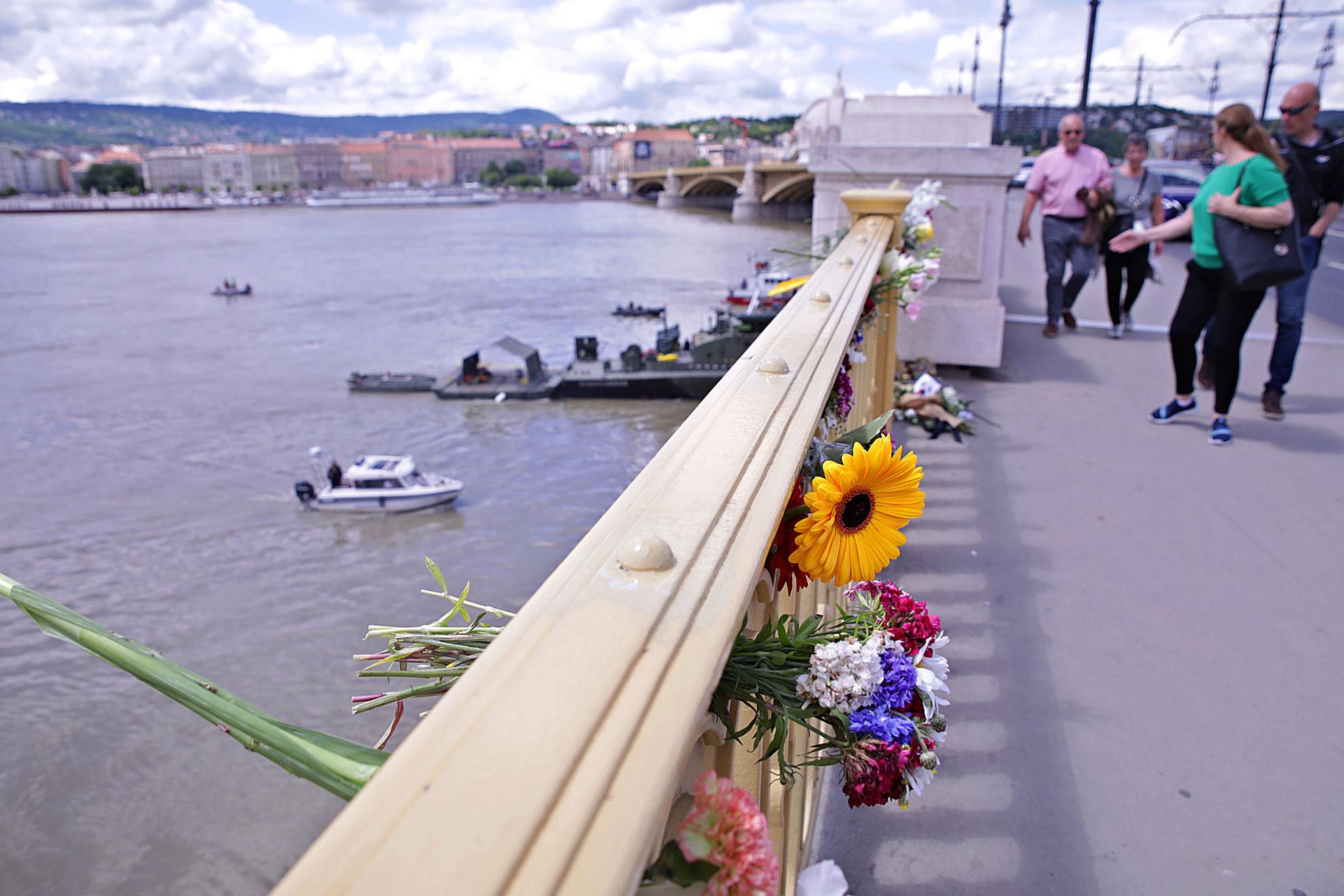 Dunai búvár és virágok a margit hídon