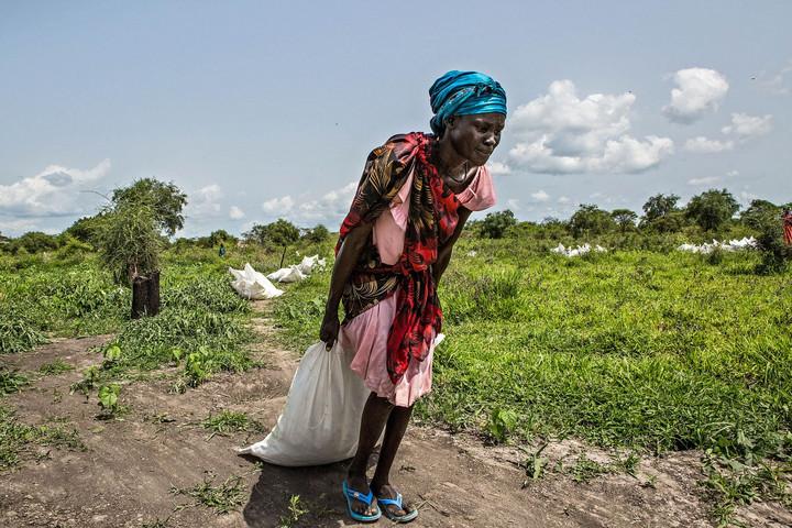 Összefogással a fejlődő országok élelmezéséért