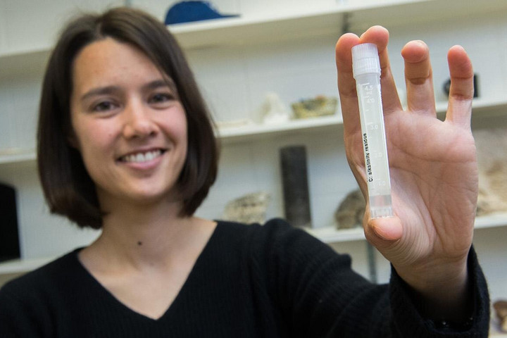 Először találtak az utolsó jégkorszakból megőrződött ősi tengervizet