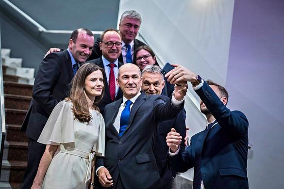 Milan Zver: Erős eredményt értünk el a Néppártnak