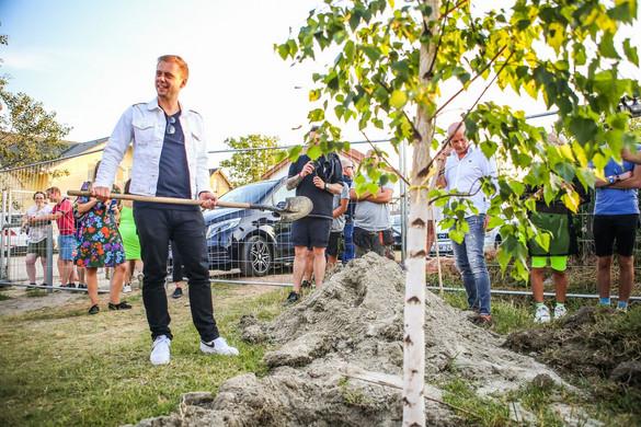 Fákat adott a Balaton Sound Zamárdinak