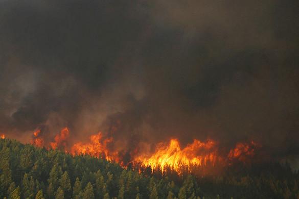 Százezrek kérik, hogy az erdőtüzek miatt vezessenek be rendkívüli állapotot Szibériában