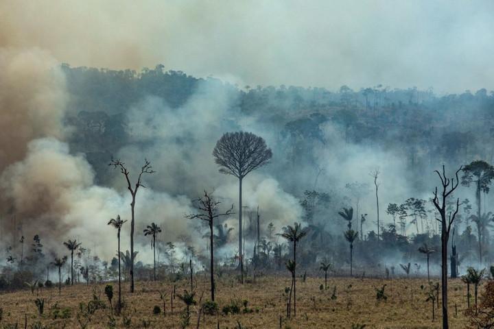 Több száz újabb helyen észleltek erdőtüzeket az Amazonas vidékén
