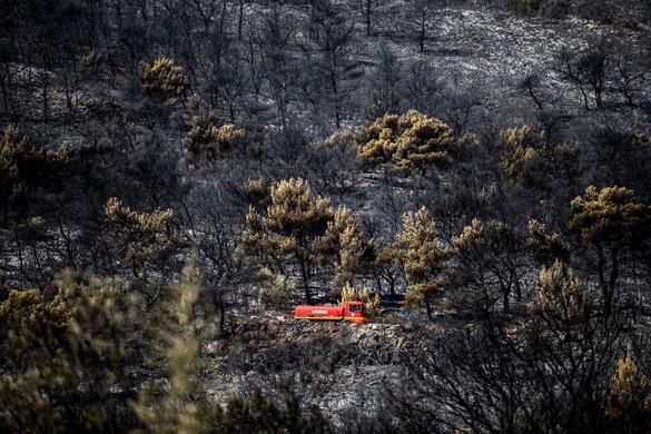 Sikerült megfékezni egy nagy erdőtüzet Athén környékén