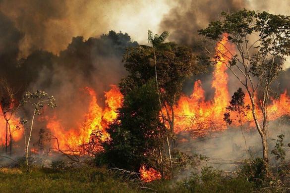 A brazil elnök a hadsereget is beveti az amazóniai erdőtüzek megfékezéséért