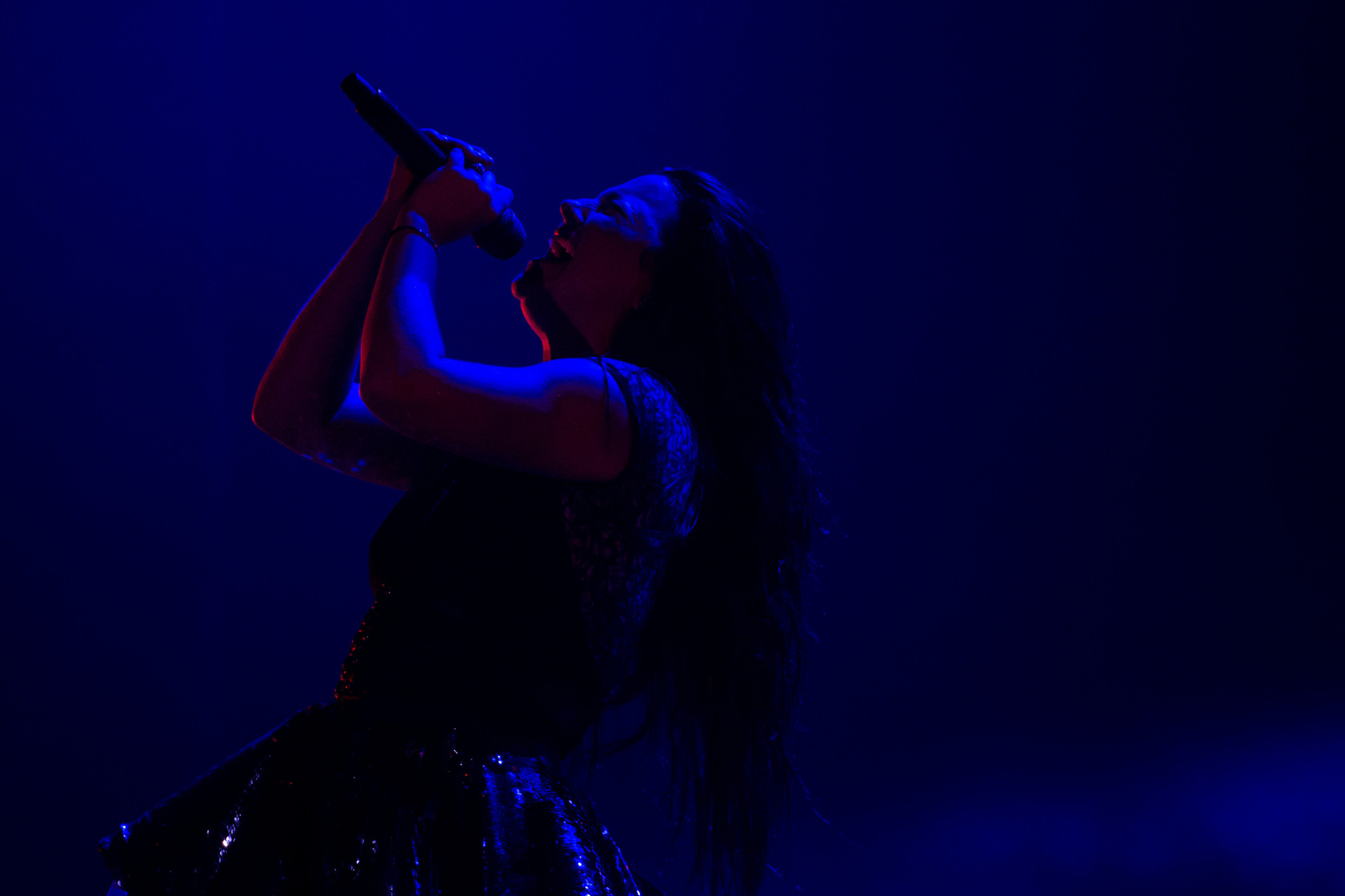 Amy Lee szívét-lelkét beleadva énekelt