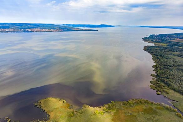 Foszfor miatt algásodhatott el a Balaton
