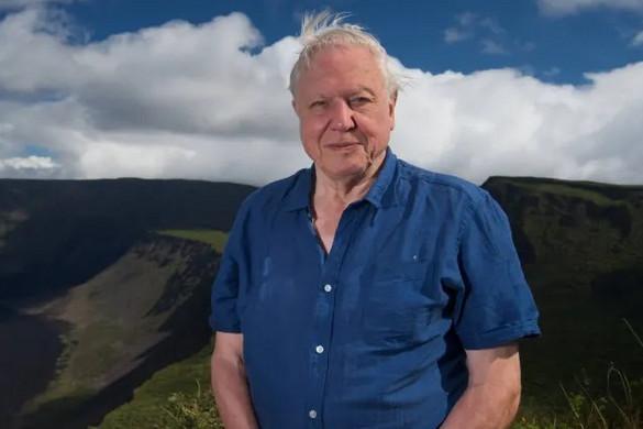 Új filmsorozattal készül David Attenborough