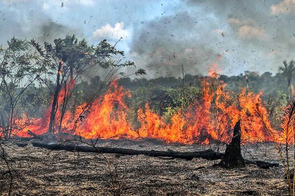 Amazonas: tízmilliók vízellátása forog kockán az erdőtüzek miatt