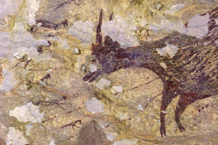 A világ legrégebbi barlangfestményére bukkantak Indonéziában