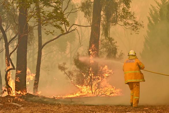 Ismét tűzoltók haltak meg az október óta tartóbozóttüzek miatt Ausztráliában