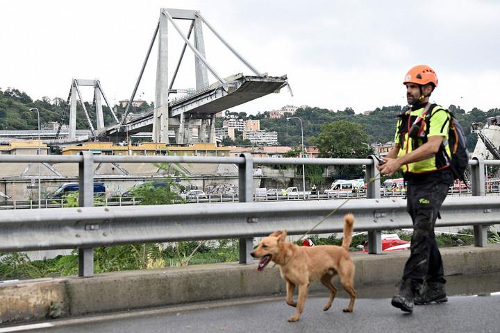 Genovai hídomlás: visszavonhatják az üzemeltetési engedélyt