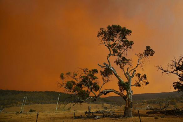 Apokalipszis Ausztráliában