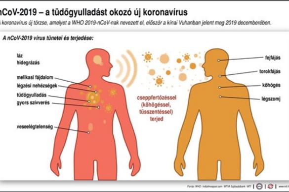 Nem terjed olyan gyorsan a koronavírus, mint a szamárköhögés