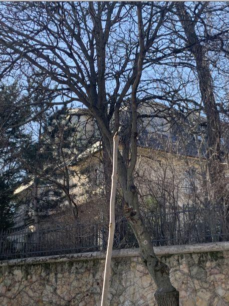 2014 óta semmit sem változott Gyurcsányék háza