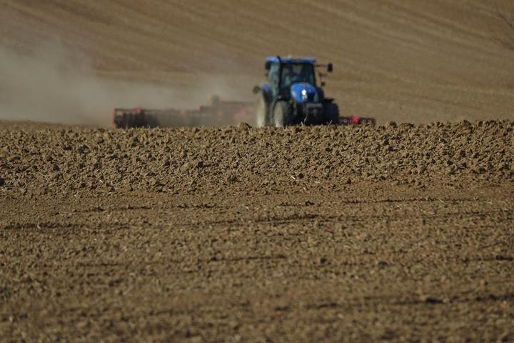 Már több mint 35 ezer vállalkozásnak segített az agrártárca