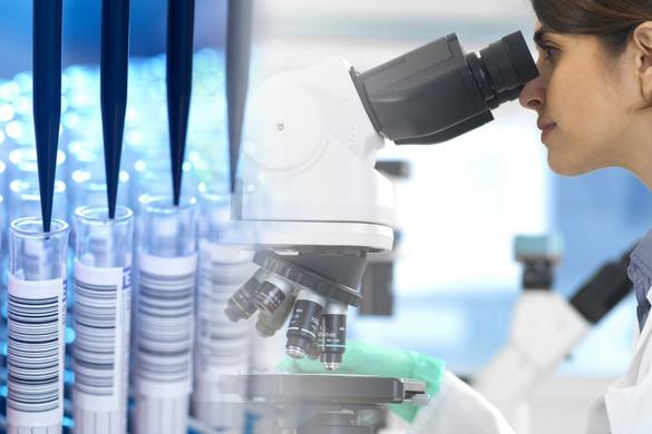 Huszonkétmilliárd forint többletforráshoz juthat a kutatóintézet-hálózat