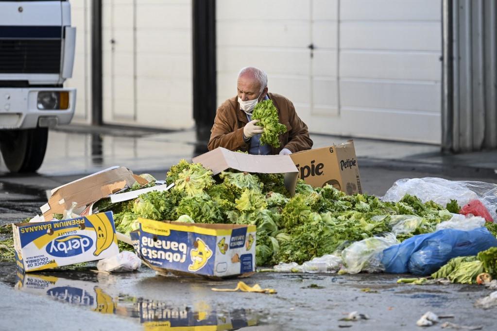 Egy férfi válogat a saláták között a Koszovó fővárosában, Pristinában a koronavírus-járvány alatt