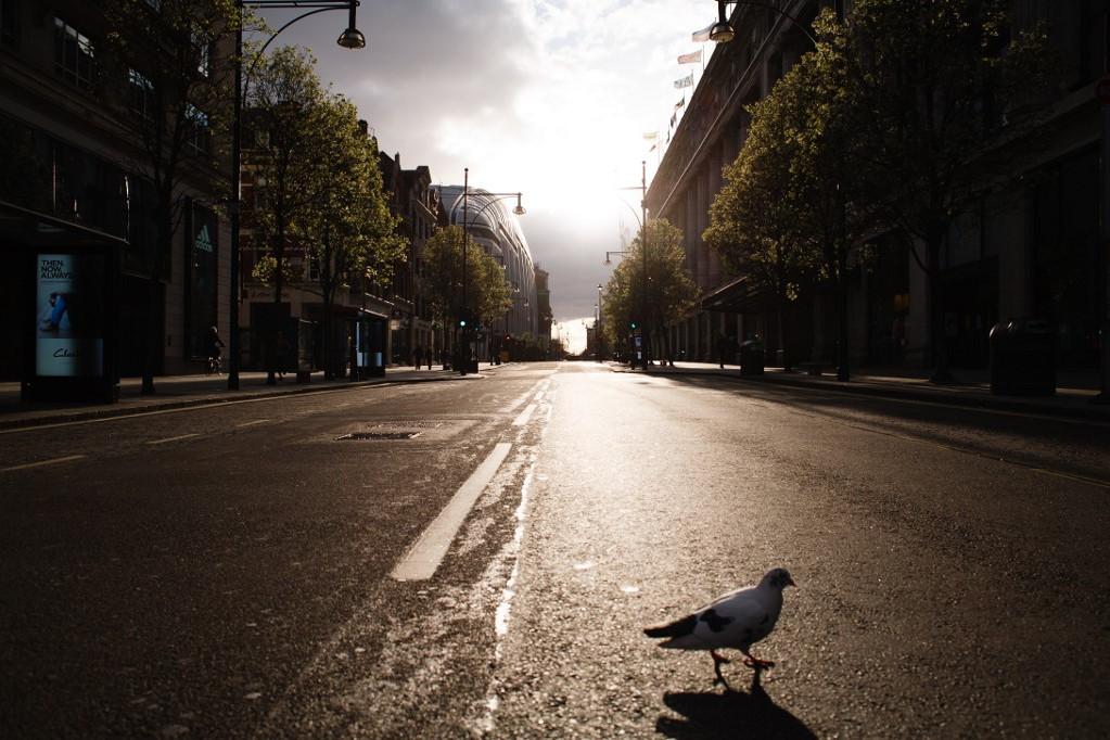 Galamb sétál az Oxford Street-en, Londonban