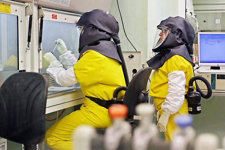 Folyamatos a potenciális hatóanyagok tesztelése