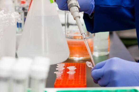 Hatékony gyógyszert találtak a súlyos koronavírusos betegek kezelésére