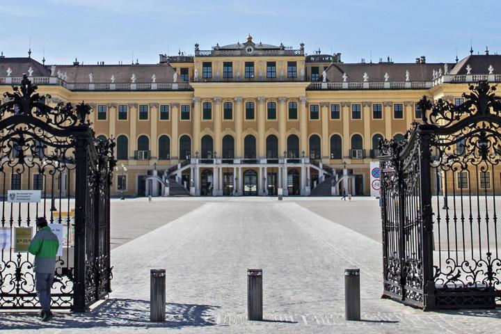 Májusban nyitnak a bécsi múzeumok és az állatkert, folytatódhat a Notre-Dame helyreállítása
