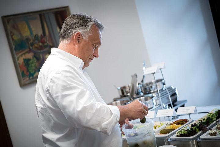 Elkészült Orbán Viktor kovászos uborkája