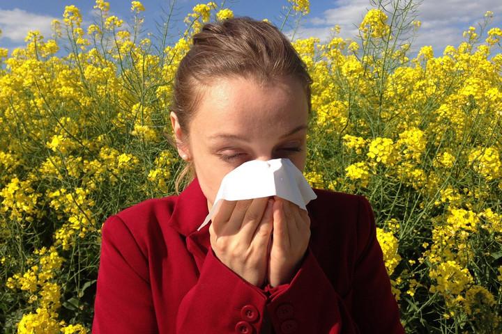 Gyógynövényekkel az allergia ellen