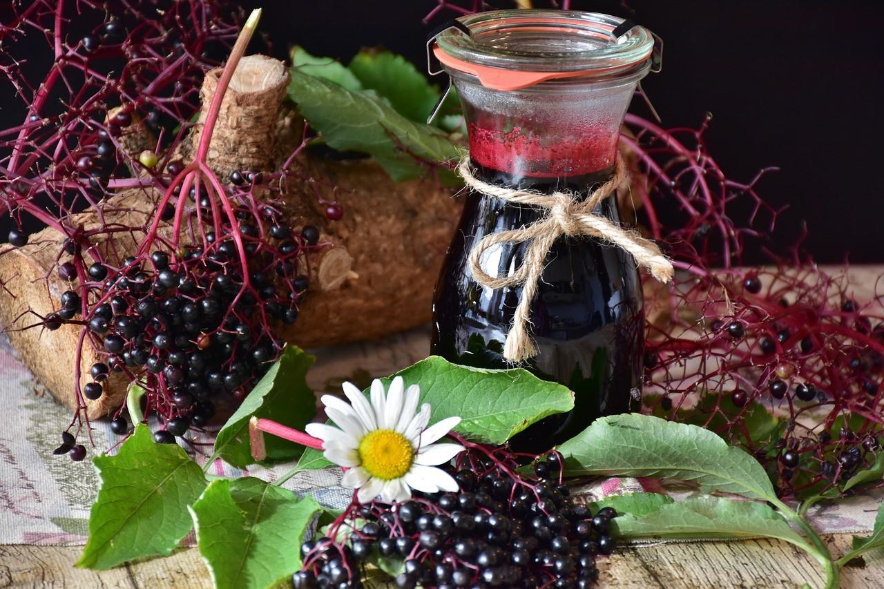 A bogyó gyümölcssavakat, C- és A-vitamint, flavonoidokat valamint antociánokat tartalmaz