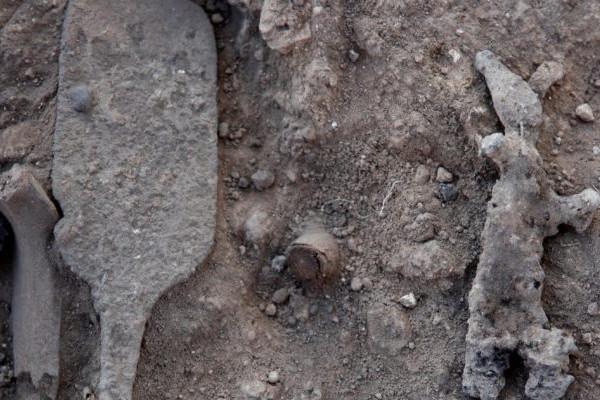 Megtalálhatták a Bibliában is szereplő isteni jogart