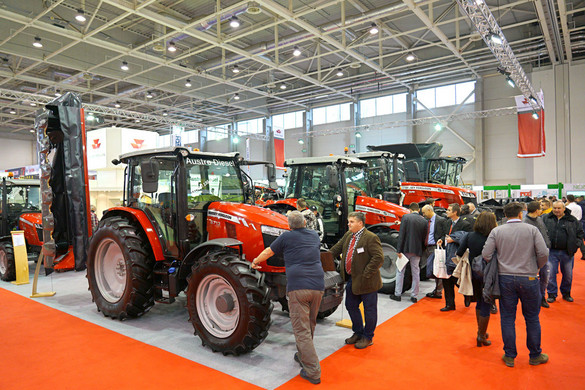 Bizakodóbbak lettek  a hazai agrárcégek