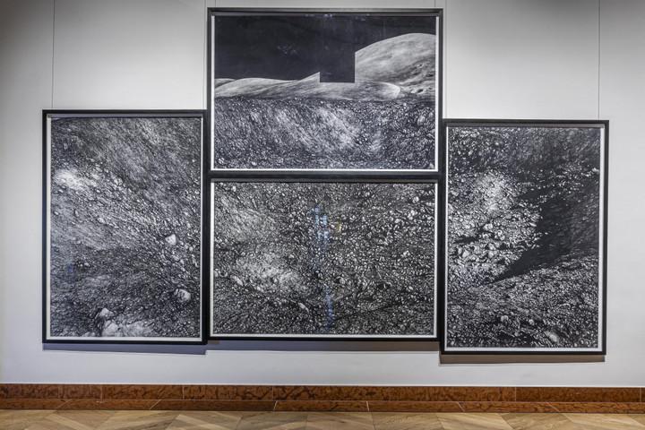 Vizuális utazás a holdtól a fekete-fehér pálmafákig