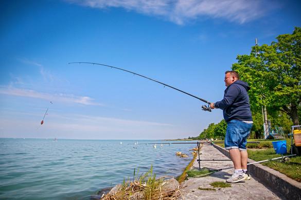 Haltelepítéssel a horgászturizmus fellendítéséért