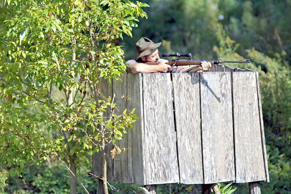 Új elemekkel egészül ki a vadászati törvény