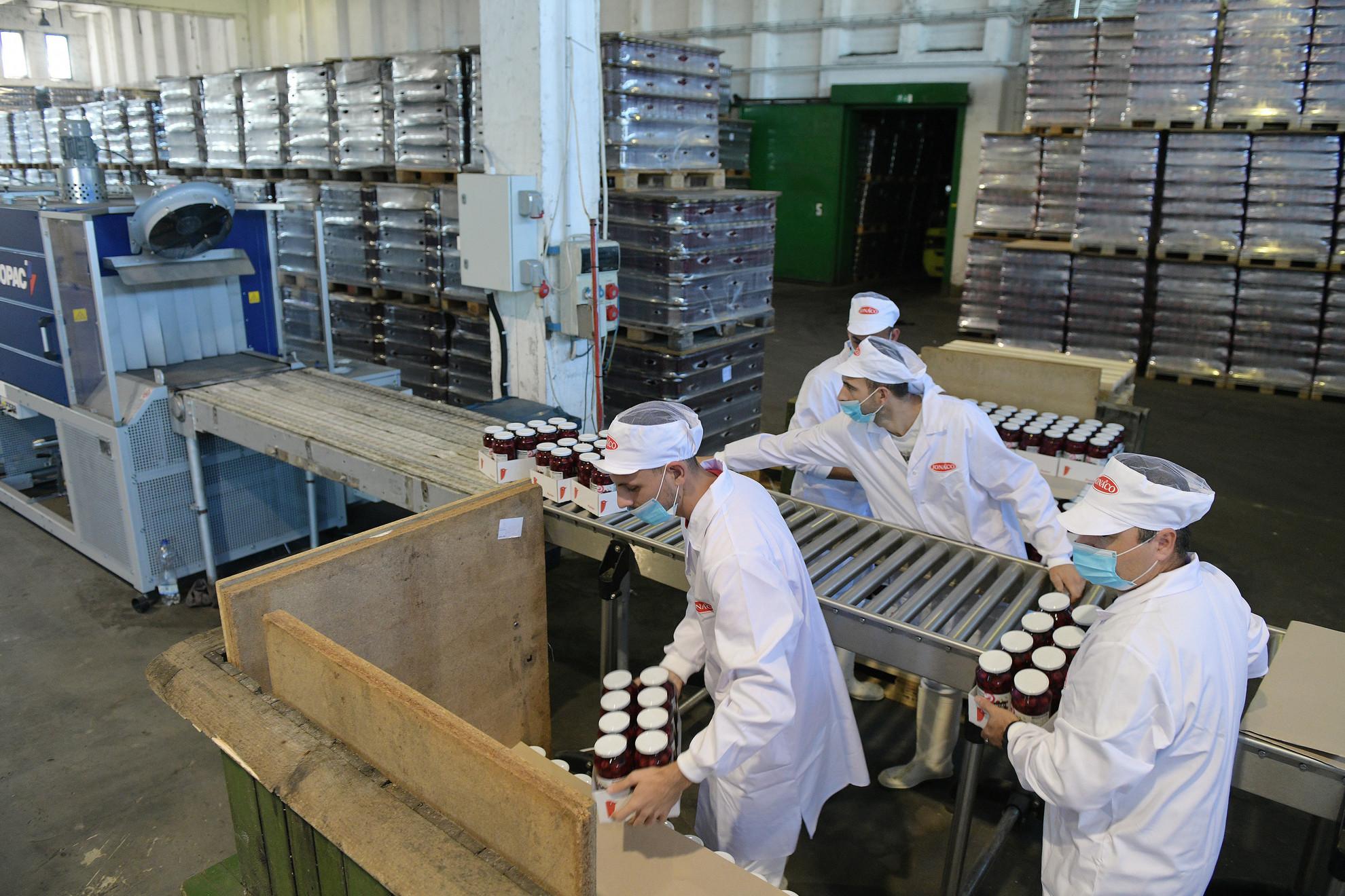 Meggykonzervet csomagolnak a gyümölcs- és zöldségkonzerv gyártással foglalkozó Jonaco Kft. fehérgyarmati üzemében a technológiai fejlesztés átadásának napján, 2020. szeptember 8-án