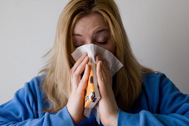 Csökken a parlagfű pollenszórása