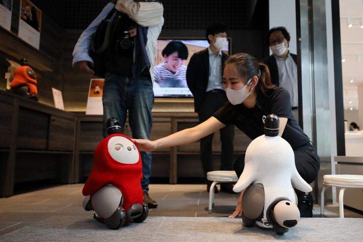 Robotokkal enyhítik az emberi kapcsolatok hiányát Japánban