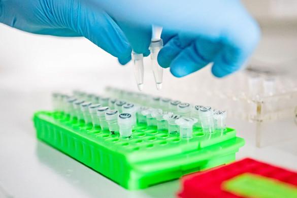 Megakadályozza a súlyos megbetegedést a koronavírus elleni magyar gyógyszer