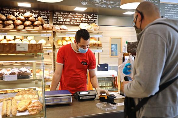 Kedvező tendenciák indultak a magyar munkaerőpiacon
