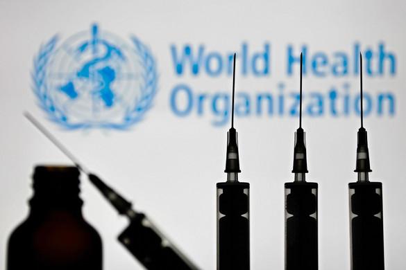 Rövid időn belül akár négyféle vakcina is érkezhet