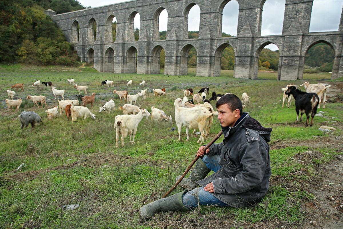 A szárazság önmagában is rengeteg gondot okoz: fiatal pásztor legeltet egy török folyó medrében