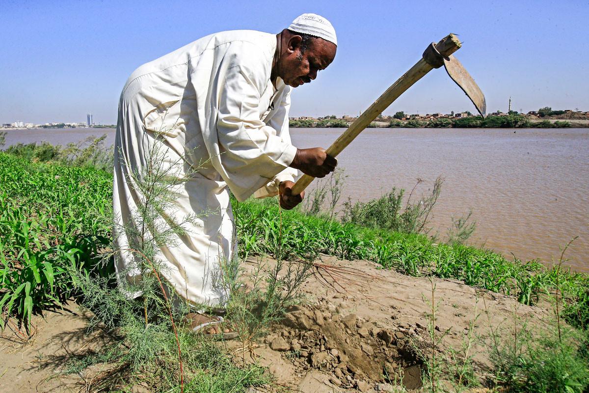 Szudáni farmer Kartúm mellett. A Nílus mentén élők számára létkérdés a folyó vízhozamának megőrzése