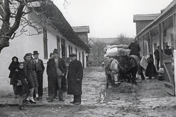 A magyarországi németek államhűsége (1918–1920)