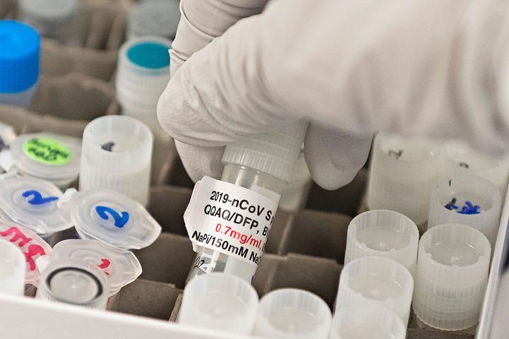 A Novavax vakcináját vizsgálja az EMA