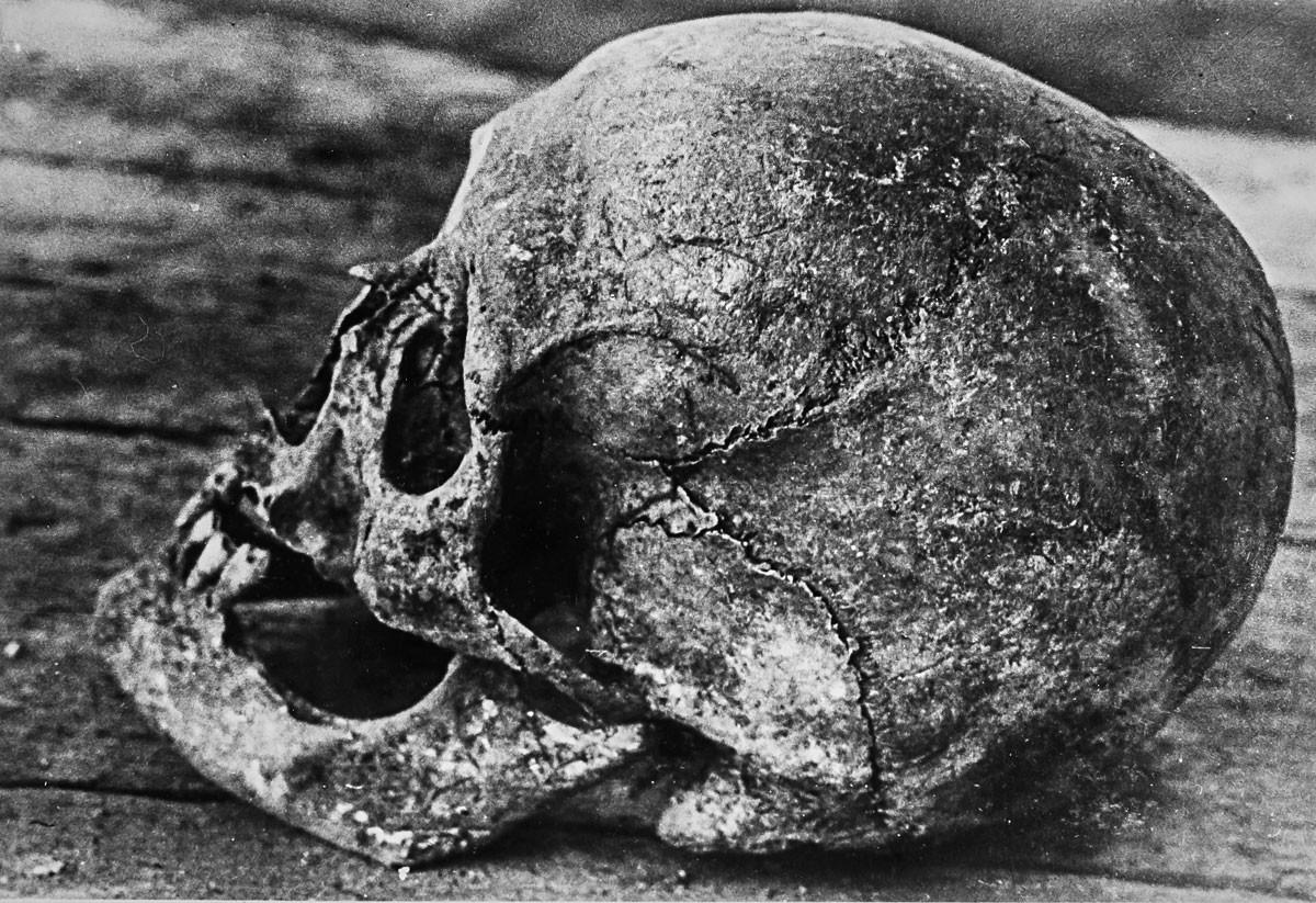 Ismeretlen szabadsághős koponyája