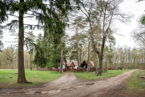 Három erdei szálláshelyet újított fel a Pilisi Parkerdő