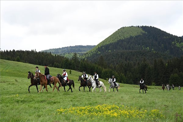 A csíksomlyói búcsúba tartó pünkösdi lovas zarándoklat résztvevői Tusnádfürdő határában