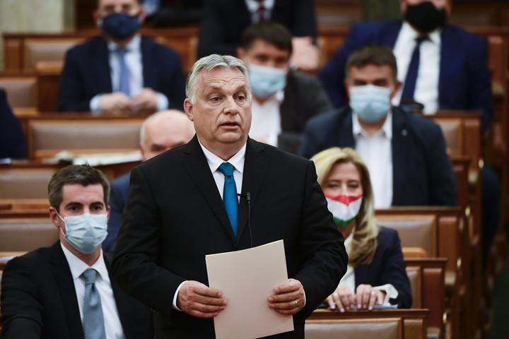 Orbán Viktor Gyurcsány csörgősipkás bohócának nevezte Jakab Pétert